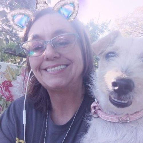 Pet Care Provider Deborah F's Profile Picture