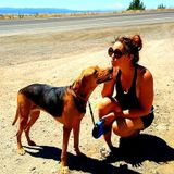 Redding, California Petsitter Opportunity