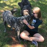 Pet Sitting Offered in Johns Creek