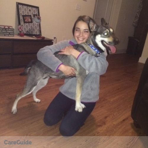Pet Care Provider Lindsey Barger's Profile Picture