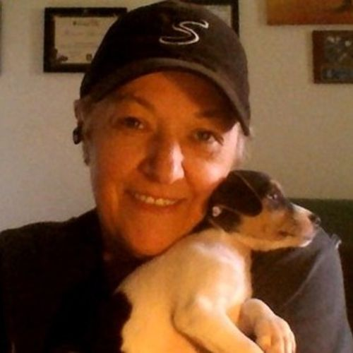 House Sitter Provider Jacque P's Profile Picture