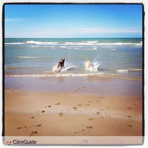Pet Care Provider Claire & Lauren's Profile Picture