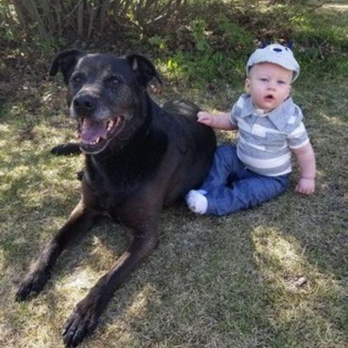 Pet Care Provider Tanis M's Profile Picture