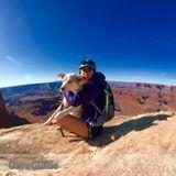 Dog Walker Job, Pet Sitter Job in Salt Lake City