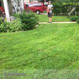 Landscaper Job in Ann Arbor
