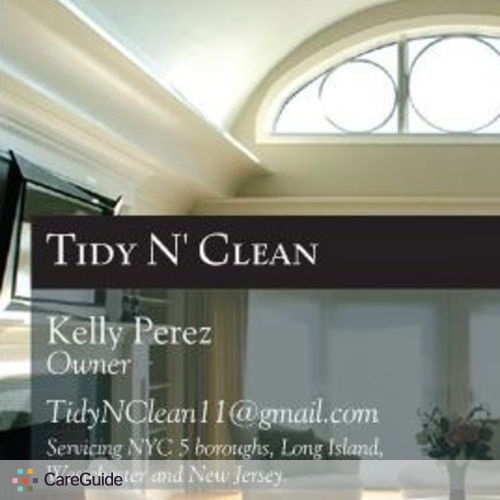 Housekeeper Provider Tidy N' Clean 's Profile Picture