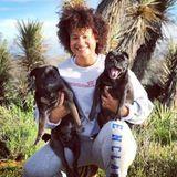 Available: Hardworking Pet Supervisor in Rosamond
