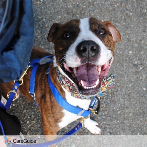 Pet Care Provider Celeste Schmidt's Profile Picture