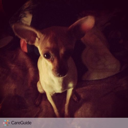 Pet Care Provider Graciela Alvarez's Profile Picture