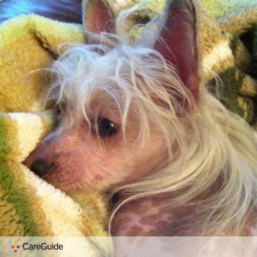 Pet Care Provider Skyla Violet's Profile Picture