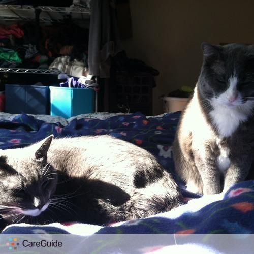 Pet Care Job Vanessa R's Profile Picture
