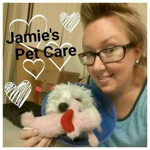 House Sitter Provider Jamie M's Profile Picture