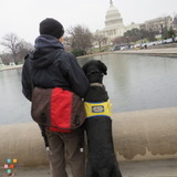 Dog Walker, Pet Sitter in Washington