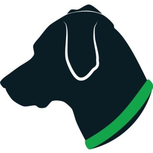 Pet Care Provider Anna Rickert's Profile Picture