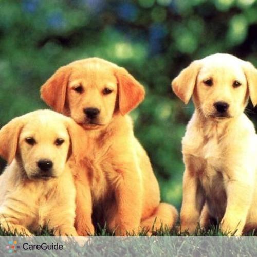 Pet Care Provider Emanuel M's Profile Picture