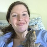 My name is Chelsea. I have significant knowledge of the care-taking of cats/dogs/reptiles & am offering drop-in and boarding.