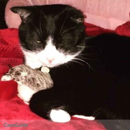 Pet Care Provider Theresa L's Profile Picture