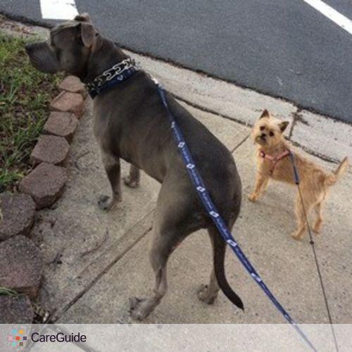 Pet Care Provider Rachael Britton's Profile Picture
