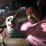 Panorama City Dog Sitter Interviewing For Job Opportunities