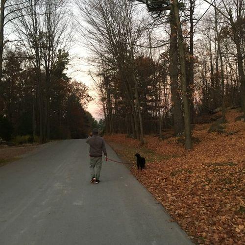 Pet Care Provider Luis Z's Profile Picture