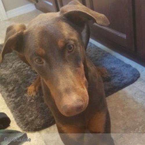 Pet Care Provider Sandra Prieto's Profile Picture