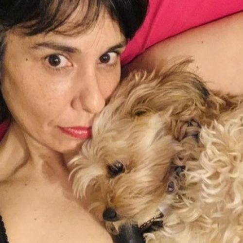 For Hire: Disciplined Pet Sitter in Los Angeles, California