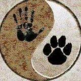 No Worries Pet Sitting and Dog Walking