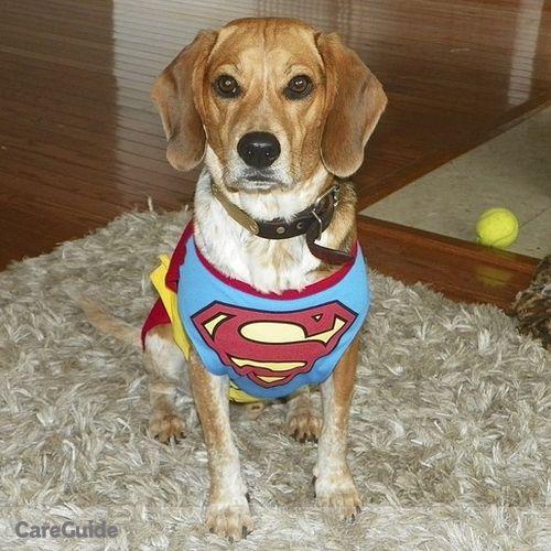 Pet Care Provider Jeannie Smith's Profile Picture