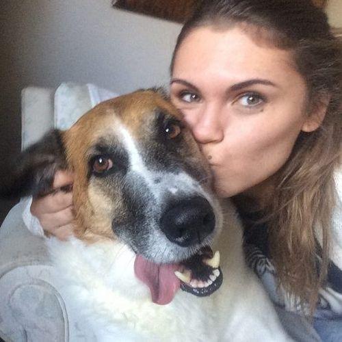 Pet Care Provider Lauren S's Profile Picture