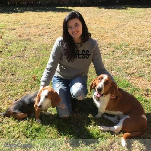 Pet Care Provider Chelsea Chrismon's Profile Picture