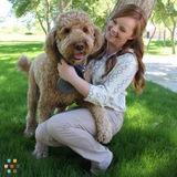 Dog Walker, Pet Sitter in Gilbert