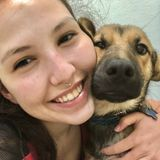 Experienced and passionate animal lover in T.O. Pet sitting/walking/overnight.