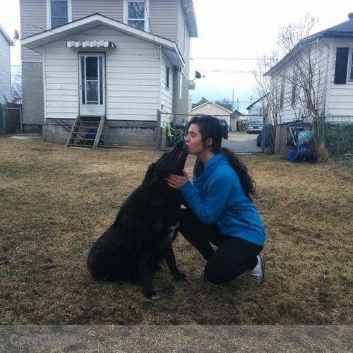 Pet Care Job Ashley Larochelle's Profile Picture