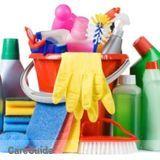 Housekeeper, House Sitter in Racine