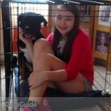 Dog Walker, Pet Sitter in South Bend