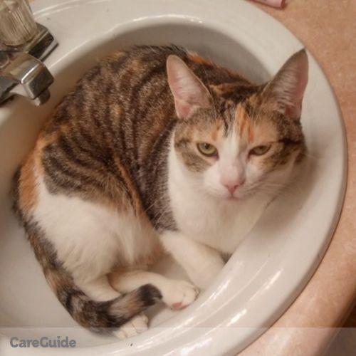 Pet Care Job Anna Bilodeau's Profile Picture