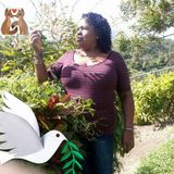 My name is Pamela,and am offering housekeping job-am very keen when it comes to cleaning a house/rooms