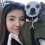 Energetic and enthusiastic student looking for work in pet care in North York, Ontario