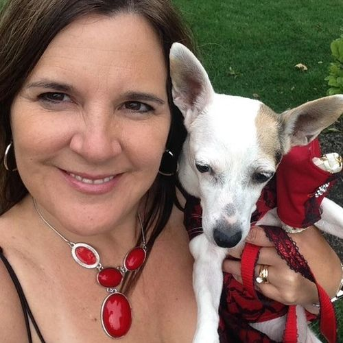 Pet Care Provider Karyn Ciccone's Profile Picture
