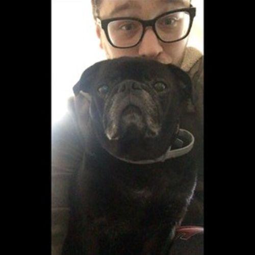 Harrisonburg, Virginia Pet Care Provider