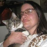 For Hire: Experienced Cat Sitter in Mebane, North Carolina