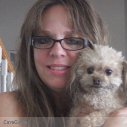 House Sitter Provider Andrea Flynn's Profile Picture