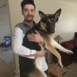 Consistent Dog Sitter avaliable in San Ramon
