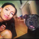 Dog Walker/Runner/Sitter, Best Rates!