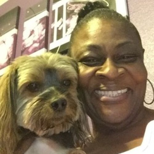House Sitter Provider Shirley C Gallery Image 3
