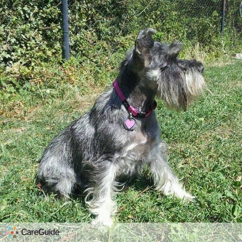 Pet Care Provider Sarka Prokopova's Profile Picture