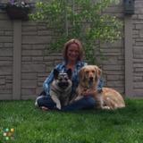 Dog Walker, Pet Sitter in Parker