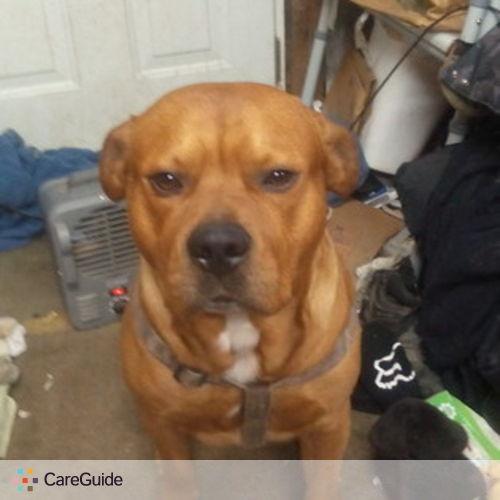 Pet Care Job Maleaha White's Profile Picture