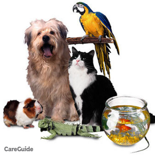 Pet Care Provider John Spivey's Profile Picture