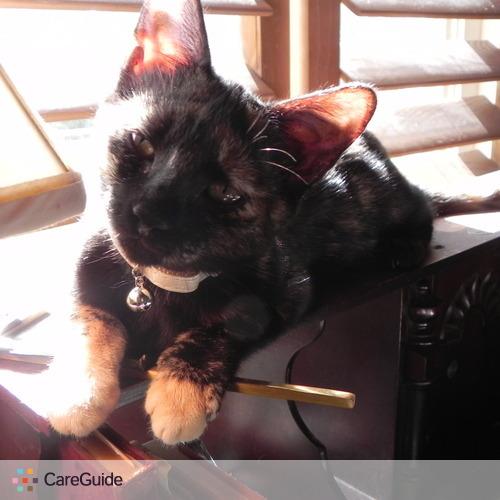 Pet Care Job Jef Lawlor's Profile Picture